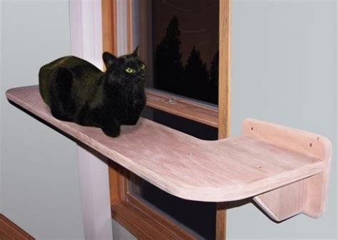 Six Cat Windowsill Perches Your Kitty Will Love