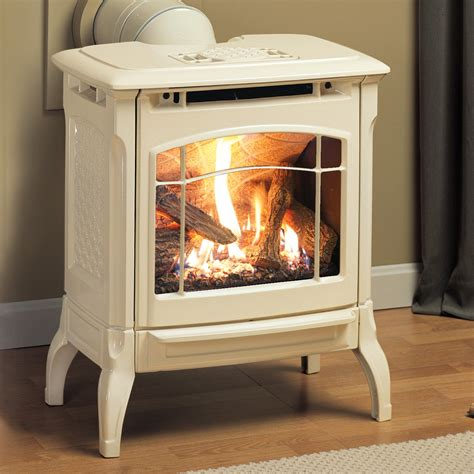 Small Gas Stove Fireplace | FIREPLACE DESIGN IDEAS ...