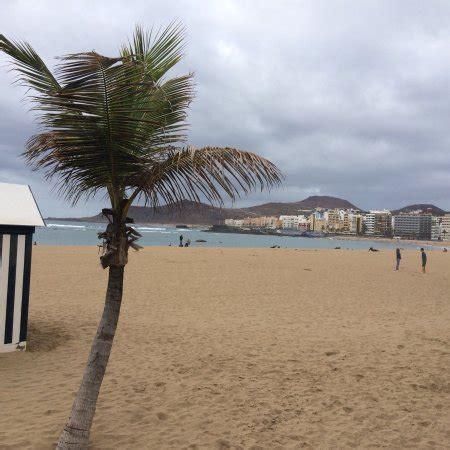Snoggy, Las Palmas de Gran Canaria - Comentários de ...