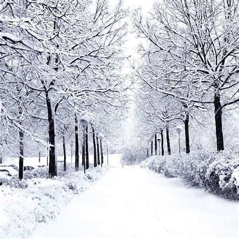 Snow scenery 10'x10' background Computer-painted (CP ...