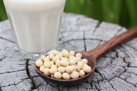 Soja, una legumbre muy polémica ¿es bueno comer soja ...