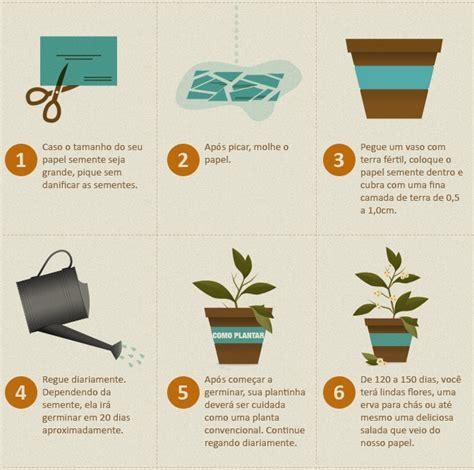 Sou Ecológico   Muito Mais Eco: Plantar e Cultivar ...