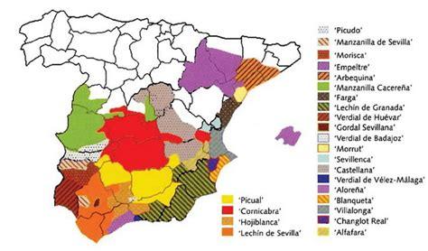 Spanish Olive Varieties   Olive Oil Market