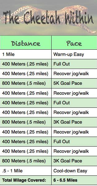 Speed training, 800m and Training workouts on Pinterest