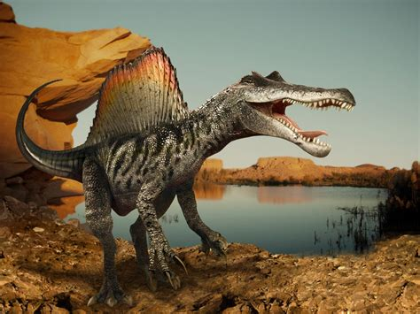 Spinosaurus Dinosaur Tumbler – Indiana9 Fossils