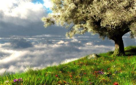 Spring Landscape Wallpaper | Hd Desktop Wallpaper