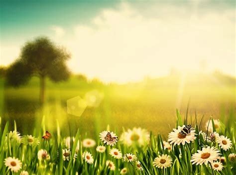 Spring weather forecast for Durban | Southlands Sun