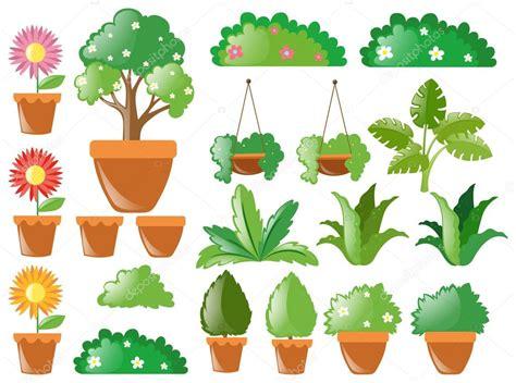 식물의 종류 — 스톡 벡터 © brgfx #127186798