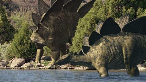 Stegosaurus | Walking with Dinosaurs Wiki | FANDOM powered ...