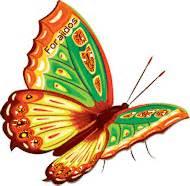 stmismo : imagenes de mariposas con movimiento