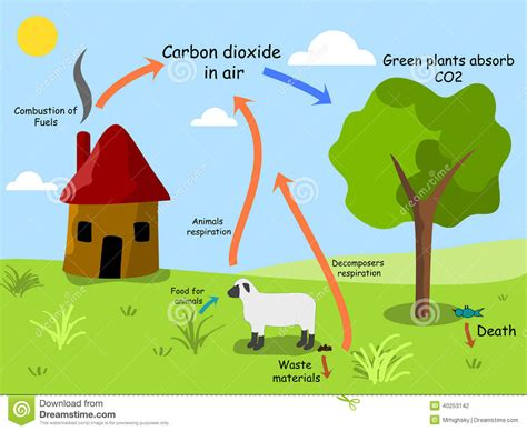 Stock Photography: Carbon dioxide cycle. Image: 40253142