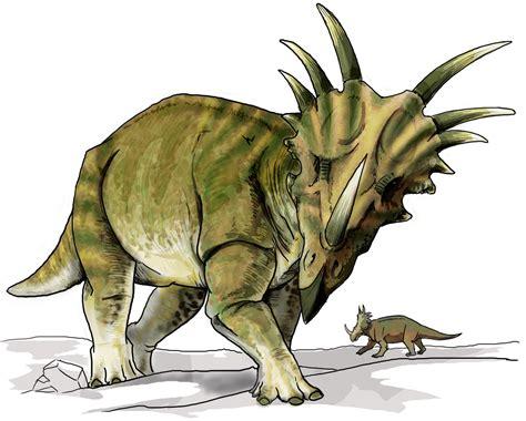 Styracosaurus — Wikipédia