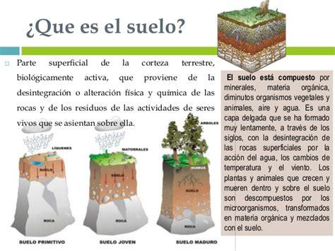 Suelos y plantas