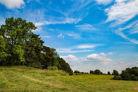 Summer Landscape Free Stock Photo   Public Domain Pictures