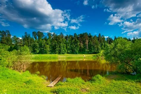Summer landscape with a small lake on the background of ...