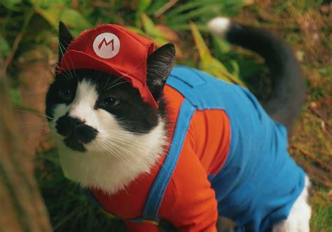 Super Mario Cat Bros.   Technabob