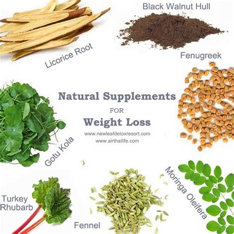 Supplements that promote weight loss   Liss cardio workout