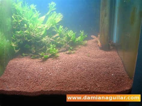 Sustratos: JBL Manado II : Acuarios, invertebrados y ...