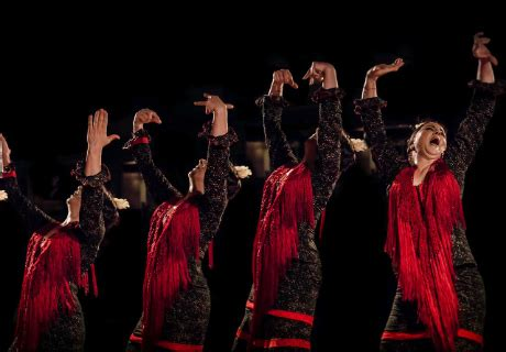 Tablao Las Carboneras Madrid, Espectáculo Flamenco en ...