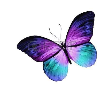 Tattoo auf Pinterest | Schmetterling tattoo bedeutung ...