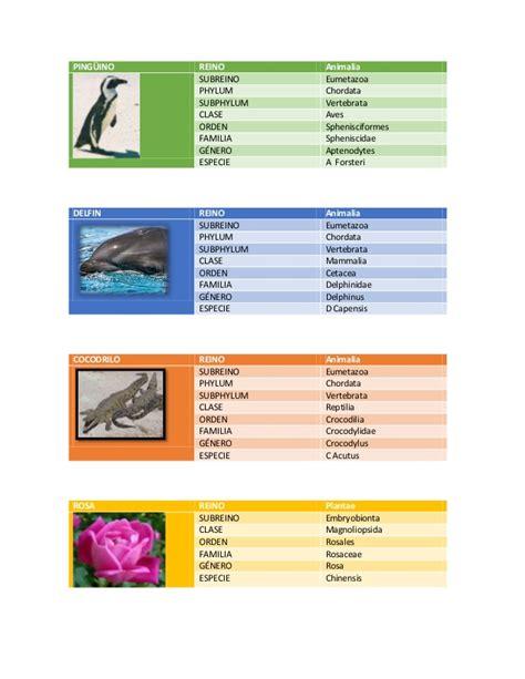 Taxonomía de varias especies