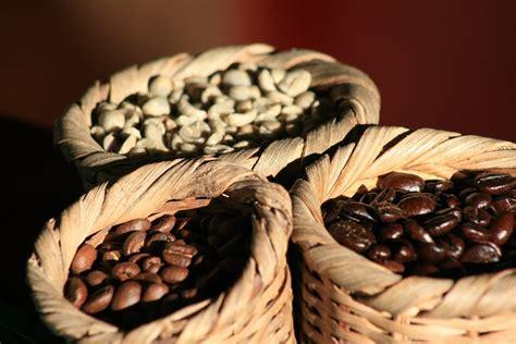 Te decimos de dónde viene el mejor café de México