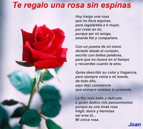 Te regalo una rosa sin espinas - Poemas de amor