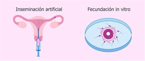 Técnicas de reproducción asistida: tipos, precio y ...