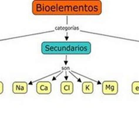Teoria Celular: Carácter anfótero de los aminoácidos