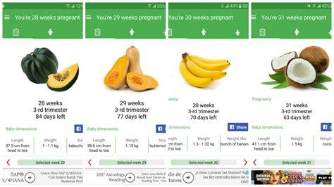 Tercer trimestre: 7 meses de embarazo (semanas 28-31 ...