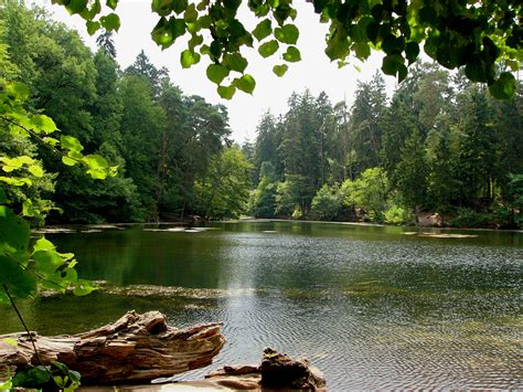 Tesoros desconocidos: el estanque Donoper   La Voz de Odin