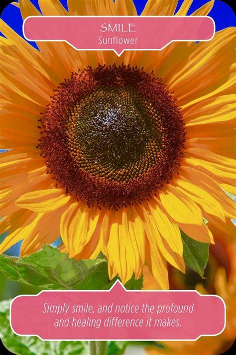 The 25+ best Doreen virtue ideas on Pinterest | Doreen ...
