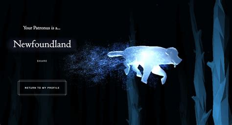 The 25+ best Pottermore patronus ideas on Pinterest | What ...