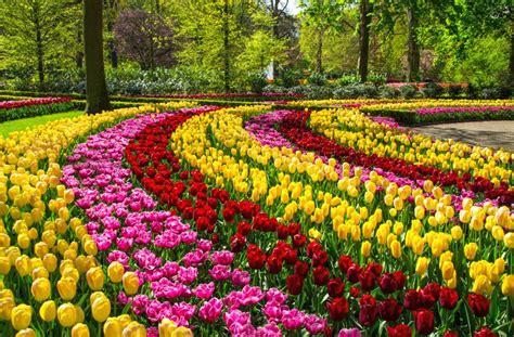 The Canadian Tulip Festival – CultureMagazin.com
