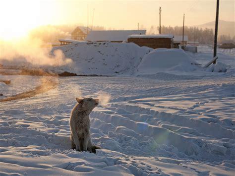 The Coldest Places on Earth   Photos   Condé Nast Traveler