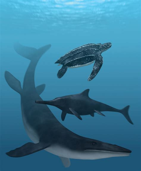 The Colors of Ancient Sea Reptiles, Reconstructed   D brief