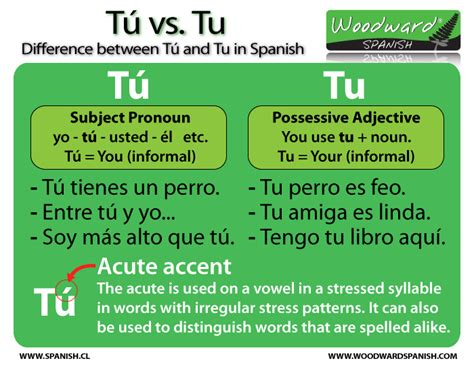 The difference between Tú and Tu | Woodward Spanish
