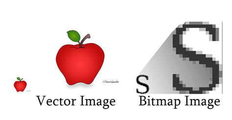 The Difference - Bitmap And Vector Graphics