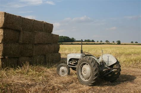 The Duchess, old Fergie tractor. | Ferguson tractor ...