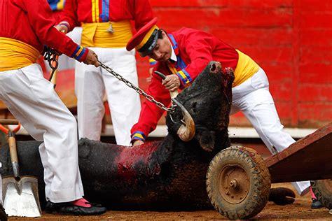 The last matadors of Mexico   World   DAWN.COM