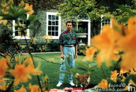 The Last Photos of Freddie Mercury Alive   FeelNumb.com