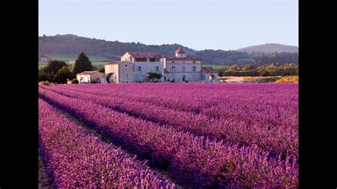 The Lavender Fields of Provence - France - YouTube