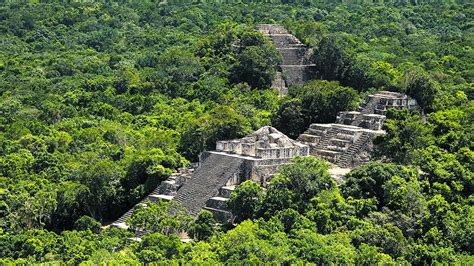 The Mayan Ruins of Calakmul, Near Merida, are Perfect for ...