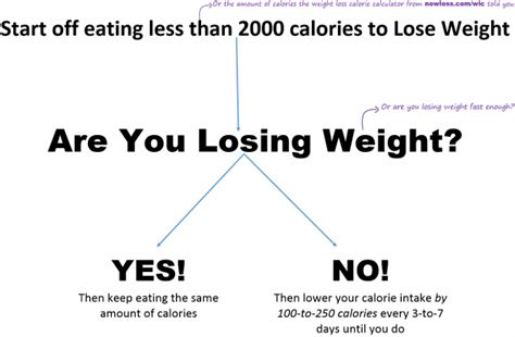 the NowLoss Diet - 4 Steps to Eat Anything You Like to ...