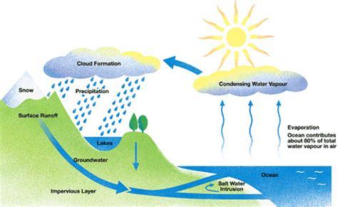 The Phases Of Water Cycle | Atiq_Azman&Rahim s Blog