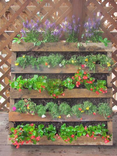 The Semi-Urban Gardener