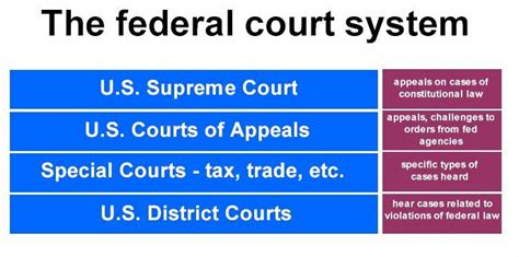 The Structure of the State Court System