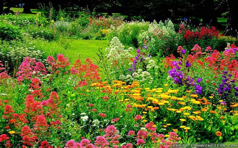 The Wonderful World of Flower Gardens | The Lone Girl in a ...
