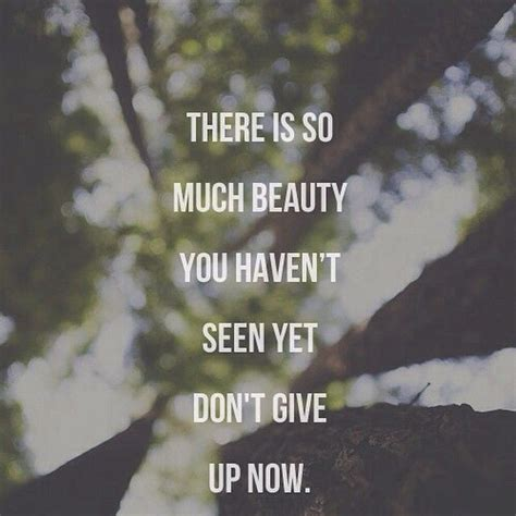There Is So Much Beauty, You Havent Seen Yet. Dont Give Up ...