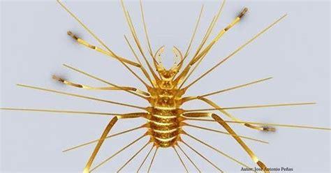 TIERRA DE DINOSAURIOS: Un insecto fósil de El Soplao ...